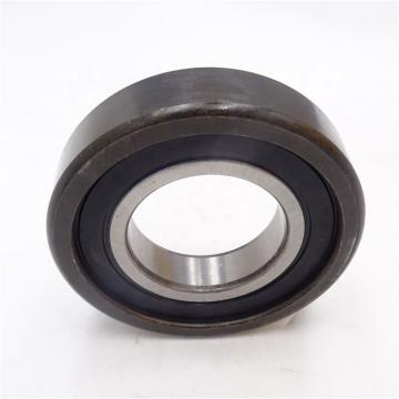 Toyana NUP3236 cylindrical roller bearings